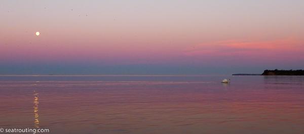 Violet morgen med fuldmåne og svaner. Ikke et øje tørt